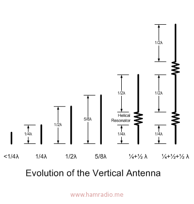 Evolution of Vertical Antenna