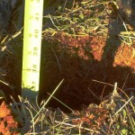 Hole depth about 36 inches
