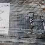 Hoverman Antenna vs Channel Master 4228 Antenna