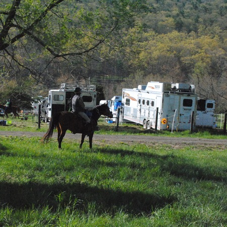 View downhill towards the trailer area of the horse endurance ride.